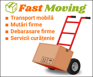 firma transport mobilier